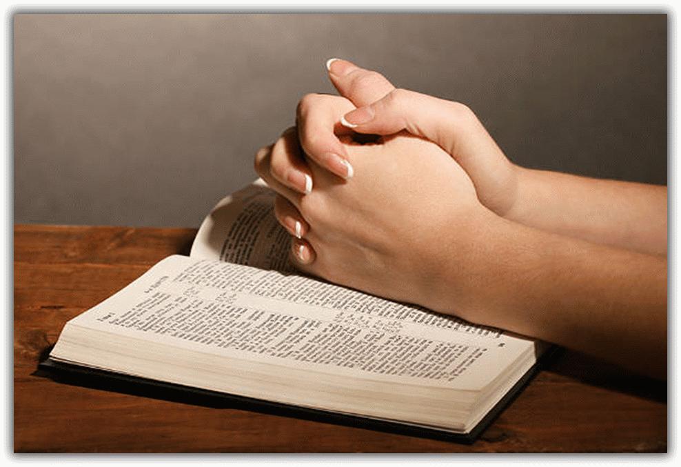 руки и книга