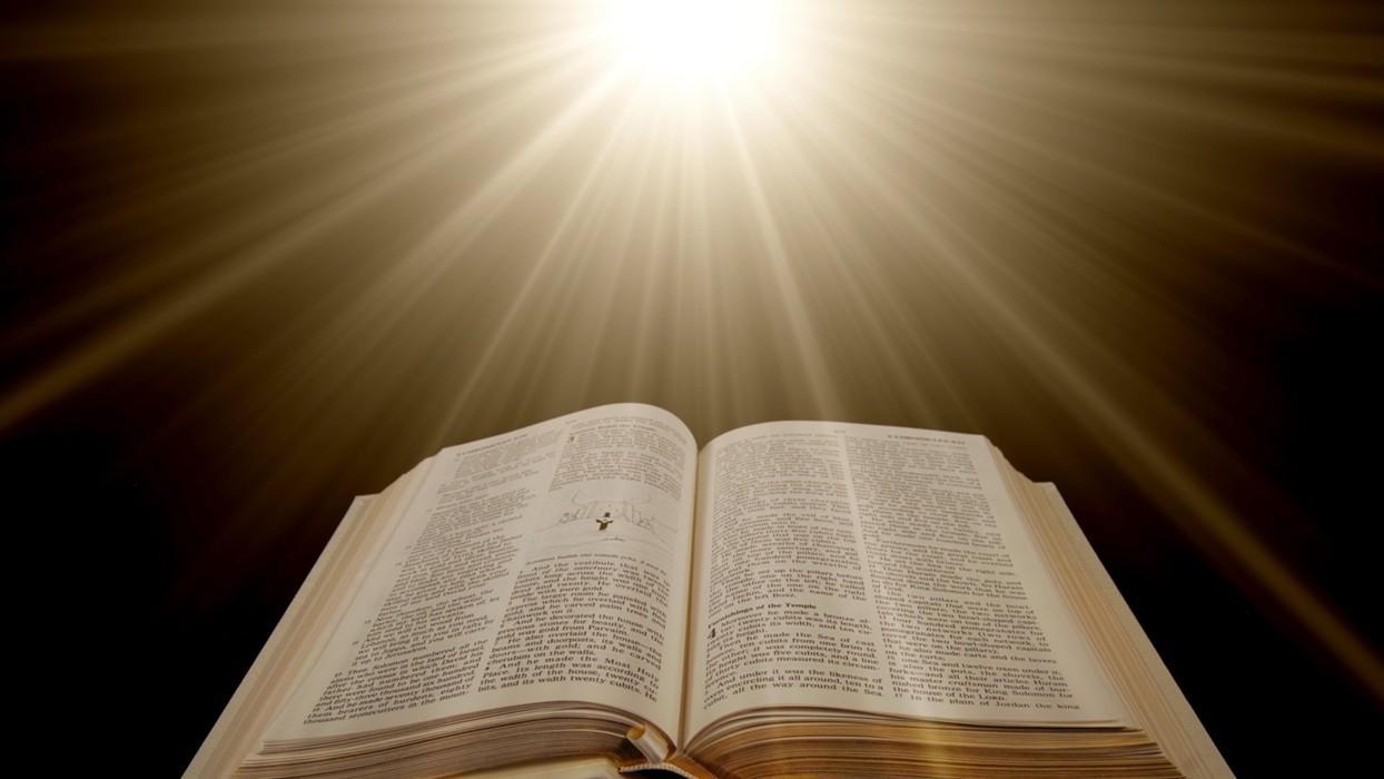 свет и книга