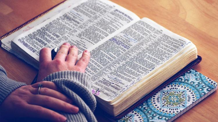 книга и рука