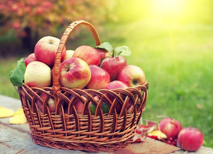 молитва на освящение плодов на преображение